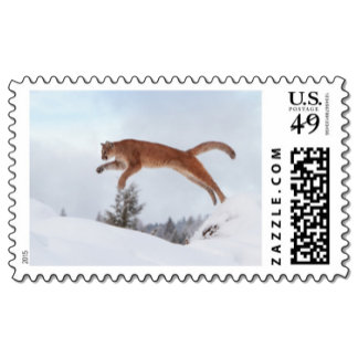 Wildlife Postage Stamps