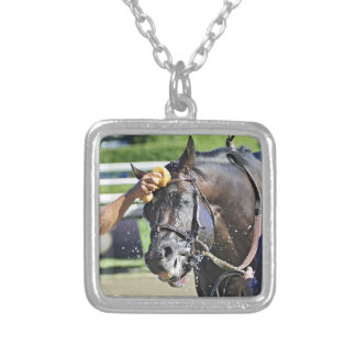 Swag Daddy gets a cold soaking after the race Silver Plated Necklace