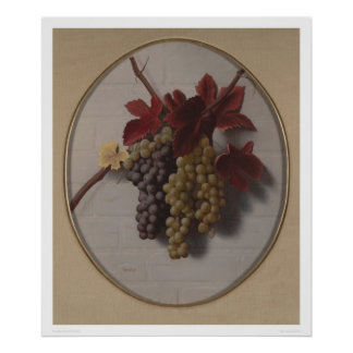 Swag of Grapes (1363) Poster