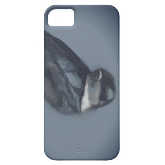 swallow case for the iPhone 5