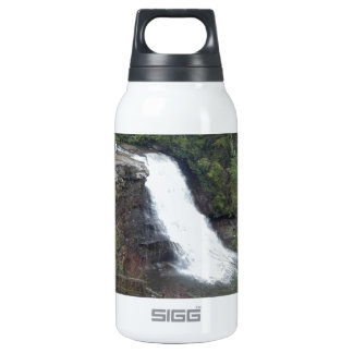 swallow falls insulated water bottle