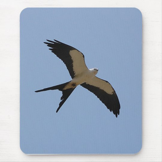 Swallow Tail Kite Mouse Pad