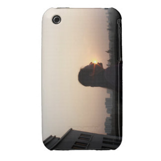 Swallow The Sun iPhone 3 Cases