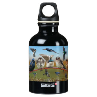 Swallows and Purple Martin Water Bottle