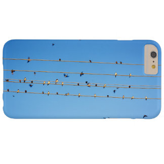Swallows on wire barely there iPhone 6 plus case