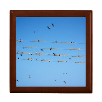 Swallows on wire keepsake box