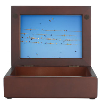 Swallows on wire keepsake boxes