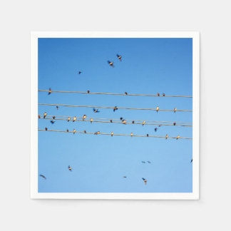 Swallows on wire paper napkin