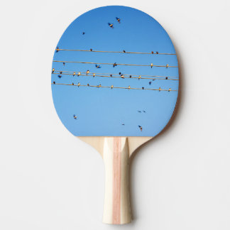 Swallows on wire Ping-Pong paddle