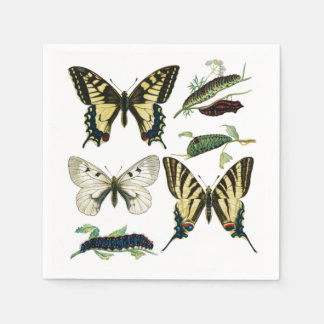 Swallowtail Butterflies, Caterpillars and Moth Paper Napkin