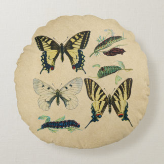 Swallowtail Butterflies, Caterpillars and Moth Round Pillow