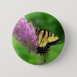 Swallowtail Butterfly Button 3