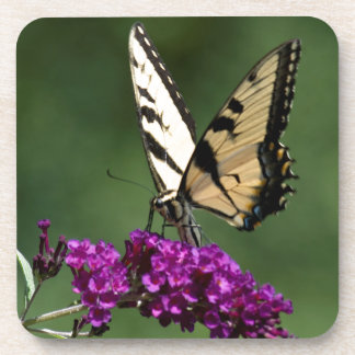 Swallowtail Butterfly Drink Coaster