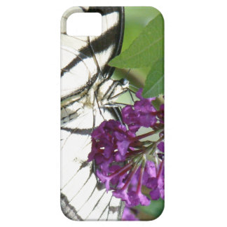 Swallowtail Butterfly Flower Floral Wildlife iPhone 5 Cover
