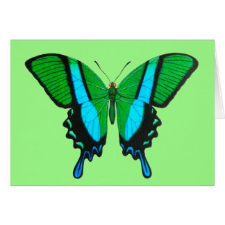 Swallowtail Butterfly in Green, Turquoise & Black Card