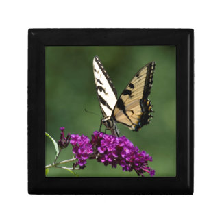 Swallowtail Butterfly Jewelry Boxes