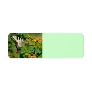 Swallowtail Butterfly Custom Return Address Labels