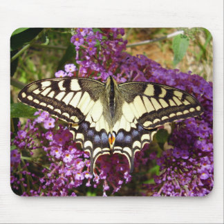 Swallowtail Butterfly Mouse Mat Mouse Pad