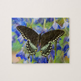 Swallowtail Butterfly on blue Puzzles
