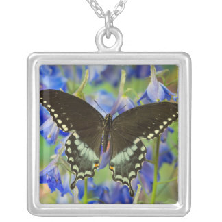 Swallowtail Butterfly on blue Silver Plated Necklace