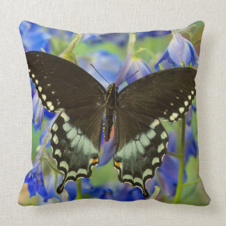Swallowtail Butterfly on blue Throw Pillow