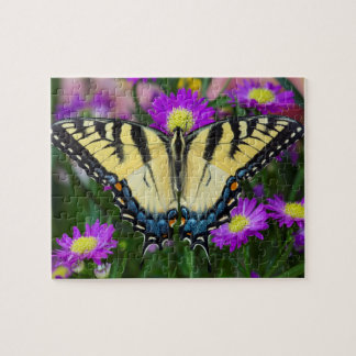 Swallowtail Butterfly on daisy Jigsaw Puzzle