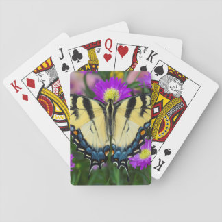 Swallowtail Butterfly on daisy Playing Cards