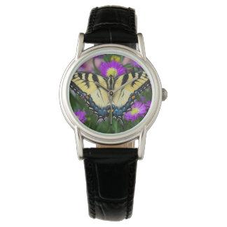 Swallowtail Butterfly on daisy Watch