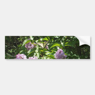 Swallowtail Butterfly on Lilac Bush Bumper Sticker