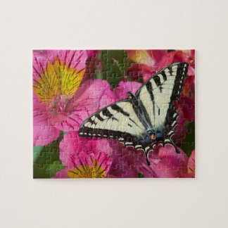 Swallowtail Butterfly on pink Jigsaw Puzzle