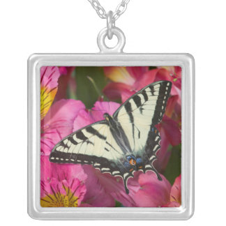 Swallowtail Butterfly on pink Silver Plated Necklace
