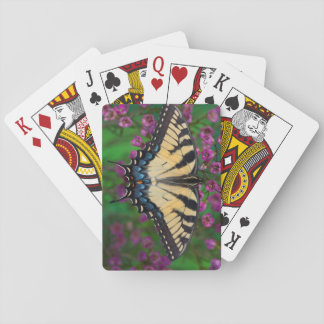 Swallowtail Butterfly on purple Playing Cards
