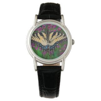 Swallowtail Butterfly on purple Watch