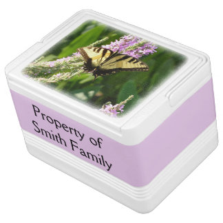 Swallowtail Butterfly on Purple Wildflowers