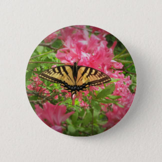 Swallowtail Butterfly Sits on Pink Azaleas 2 Inch Round Button