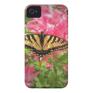 Swallowtail Butterfly Sits on Pink Azaleas iPhone 4 Case-Mate Cases