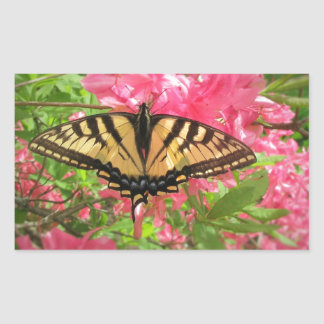 Swallowtail Butterfly Sits on Pink Azaleas Sticker