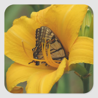 Swallowtail Lily - Butterfly Square Sticker