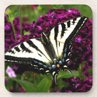 Swallowtail on the Butterfly Bush Beverage Coasters
