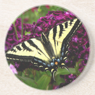 Swallowtail on the Butterfly Bush Coasters