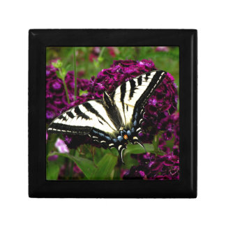 Swallowtail on the Butterfly Bush Gift Box