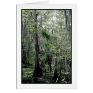 Swamp Serenity Greeting Card