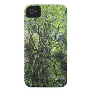 Swamp Song iPhone 4 Case
