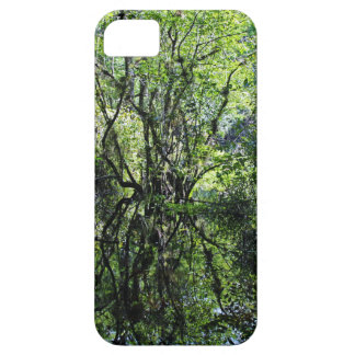 Swamp Song iPhone 5 Case
