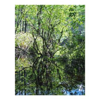 Swamp Song Letterhead