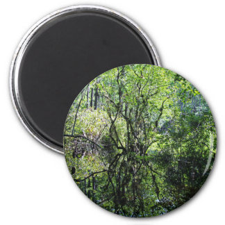 Swamp Song Magnet