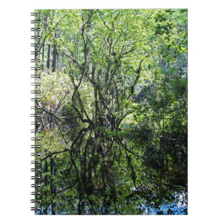 Swamp Song Notebook