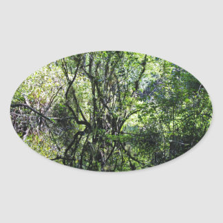 Swamp Song Oval Sticker