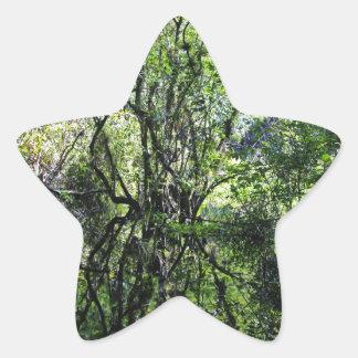 Swamp Song Star Sticker
