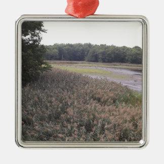 Swamp view Silver-Colored square ornament
